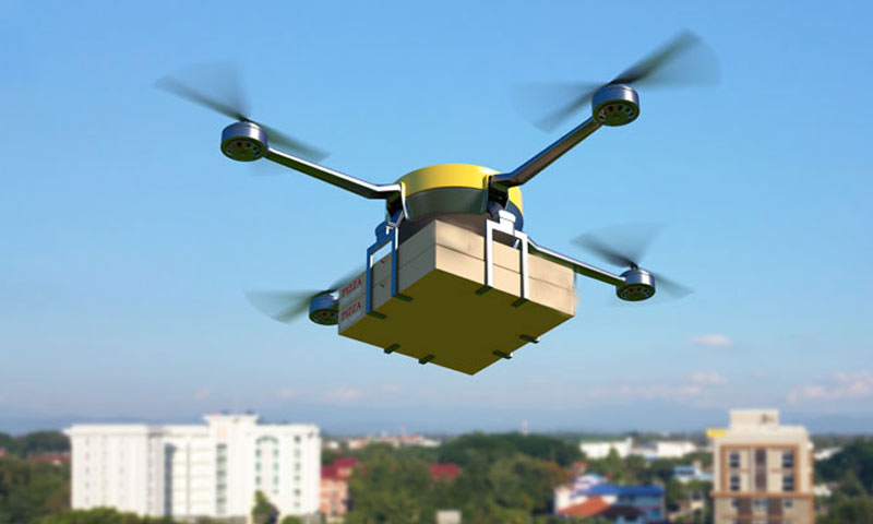 Online Shopping and Robot/Drone Delivery